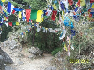 Tibetan prayer flags line a portion of the trail at the top of a hill, creating a serene and colorful site to sit and reflect.